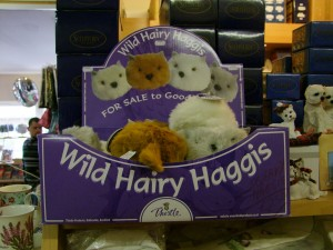 Scottish gift stores sold these cute little Hairy Haggis, I had to work hard to not bring one home.