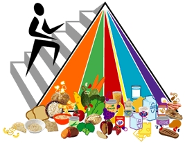 Visit MyFoodPyramid.gov to learn how to apply the Guidelines to your daily life.