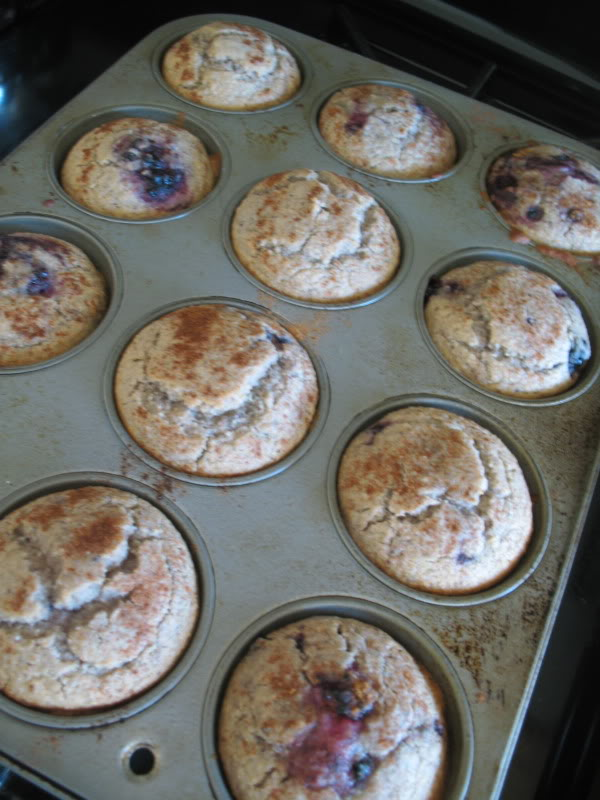 ... of the Rich and Christen: Blackberry Cornmeal Muffins (GF/CF