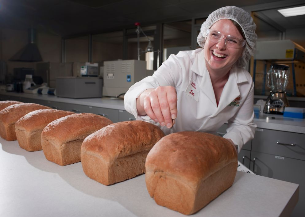 bread baking quality non-GMO