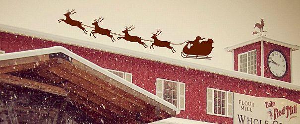 Christmas 2013 f