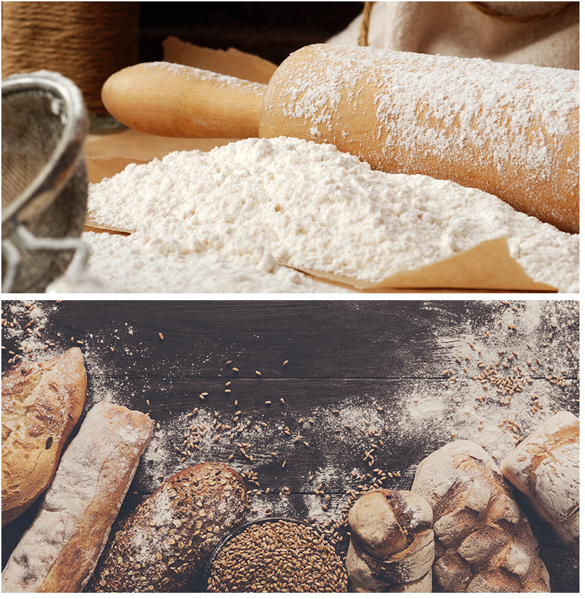 What is Bread Flour?